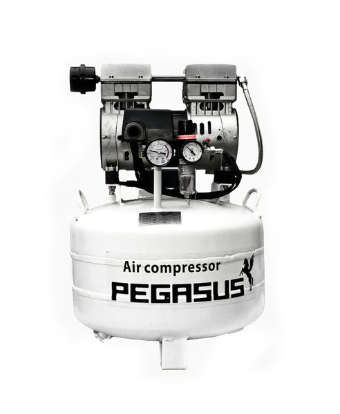 Máy nén khí không dầu Pegasus TM- OF750- 40L