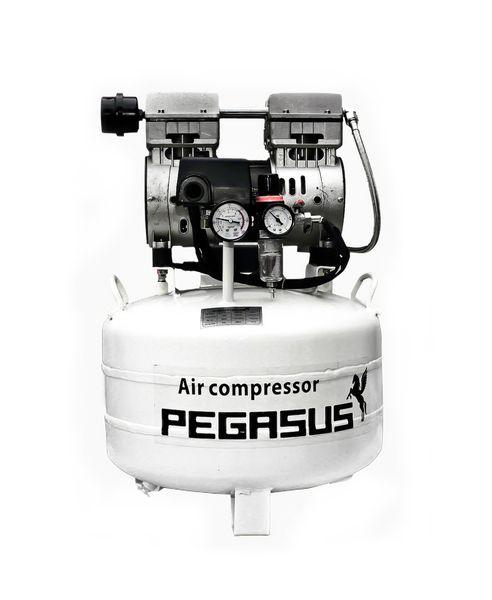 Máy nén khí không dầu Pegasus TM- OF550- 40L
