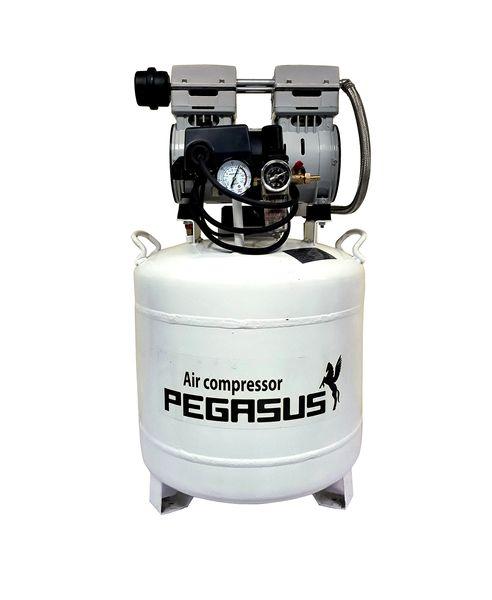 Máy nén khí không dầu Pegasus TM- OF550- 50L